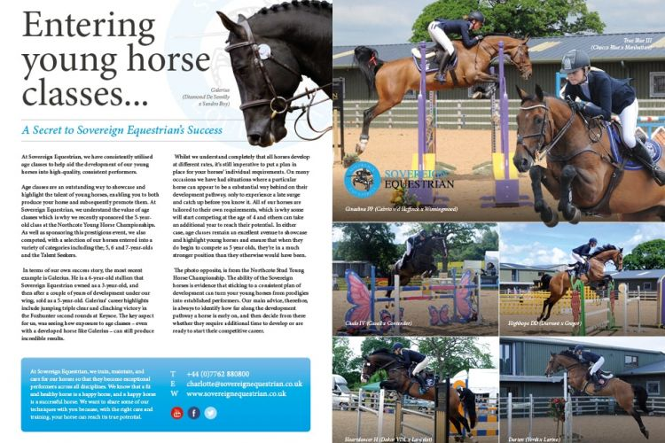 Entering young horse classes - Equestrian Life August 2017